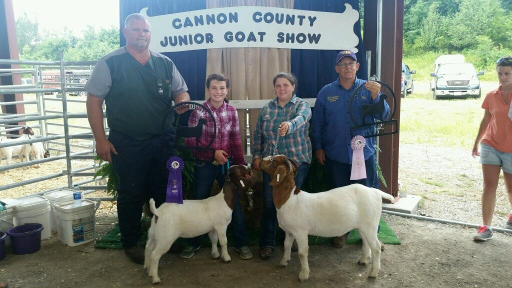 Cannon County Goat Show