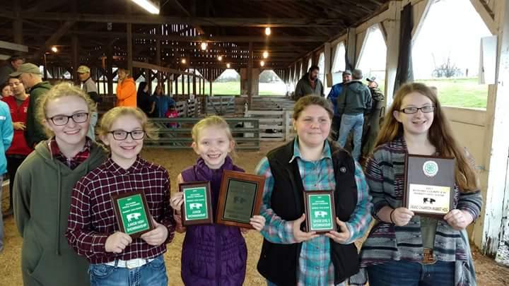 County Hog Show Dec 22