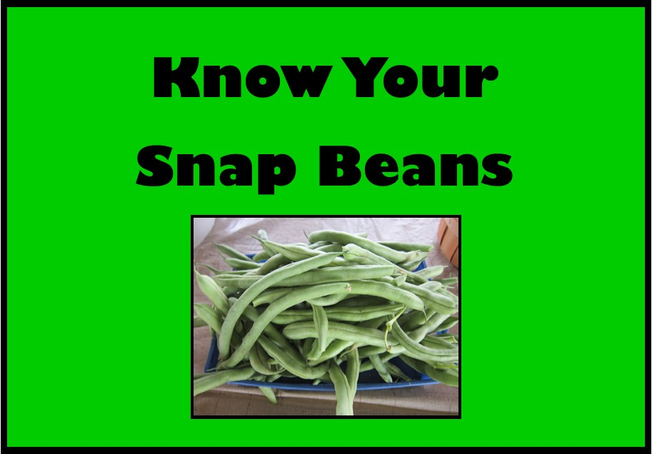 Know Your Snap Beans Video Icon