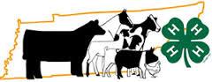 Livestock Picture 1