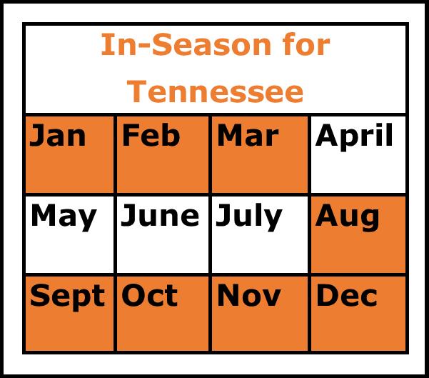 Season Chart for Sweet Potatoes
